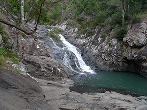 Cedar Creek falls on Mount Tamborine